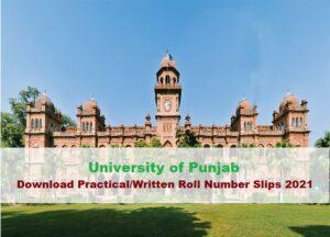 Download Practical/Written Roll No Slip 2021 PU